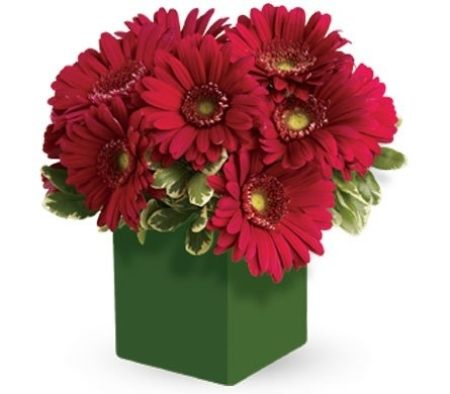 Scarlet Sunset Flower Box Arrangement