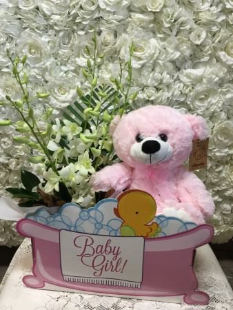 It`s A Girl Floral and Teddy Bear Bundle