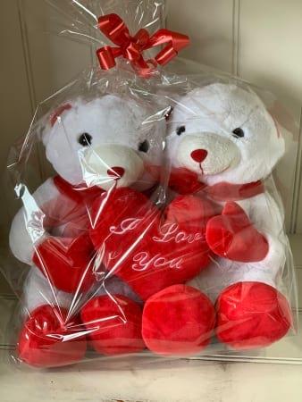 Twin Love Bears